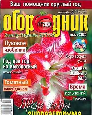 Обложка Огородник 11 2020