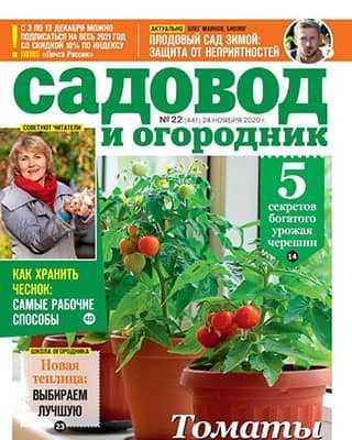 Обложка Садовод и огородник 22 ноябрь 2020
