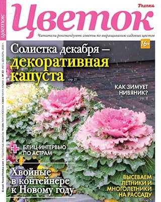 Обложка Цветок 23 2020