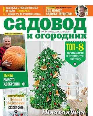 Обложка Садовод и огородник 24 2020